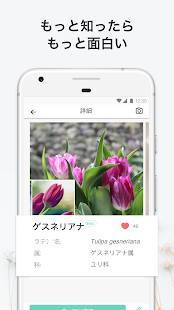 Androidアプリ「PictureThis:撮ったら、判る-1秒植物図鑑」のスクリーンショット 3枚目