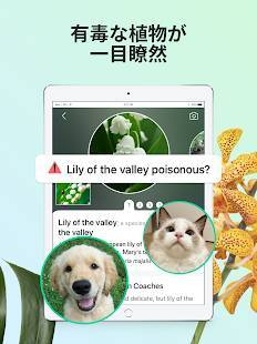 Androidアプリ「PictureThis:撮ったら、判る-1秒植物図鑑」のスクリーンショット 3枚目