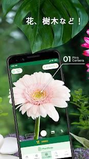 Androidアプリ「PlantSnap - 植物、樹木、花の鑑定」のスクリーンショット 3枚目