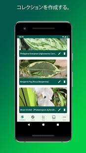 Androidアプリ「PlantSnap -植物や花、木などを識別します」のスクリーンショット 4枚目