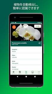 Androidアプリ「PlantSnap -植物や花、木などを識別します」のスクリーンショット 2枚目