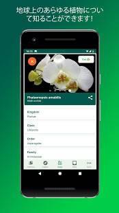 Androidアプリ「PlantSnap -植物や花、木などを識別します」のスクリーンショット 3枚目