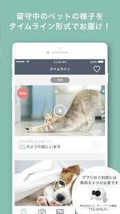 Androidアプリ「ペットみるん -ペット見守りカメラアプリ。AI自動録画で動画、写真を記録管理」のスクリーンショット 3枚目