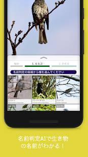 Androidアプリ「Biome (バイオーム) | いきものコレクションアプリ」のスクリーンショット 2枚目