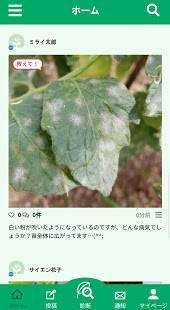 Androidアプリ「病害虫診断&栽培SNS  SCIBAI -サイバイ-」のスクリーンショット 3枚目