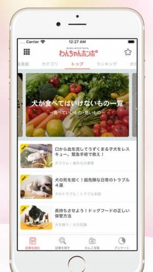 iPhone、iPadアプリ「犬のニュースや飼い方の情報をまとめ読み -わんちゃんホンポ-」のスクリーンショット 2枚目