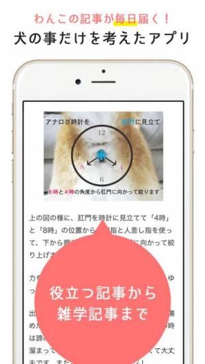 iPhone、iPadアプリ「犬のニュースや飼い方の情報をまとめ読み -わんちゃんホンポ-」のスクリーンショット 3枚目