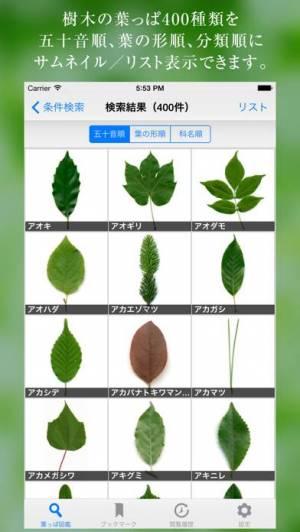 iPhone、iPadアプリ「葉っぱ図鑑 - Leaf Dictionary -」のスクリーンショット 1枚目