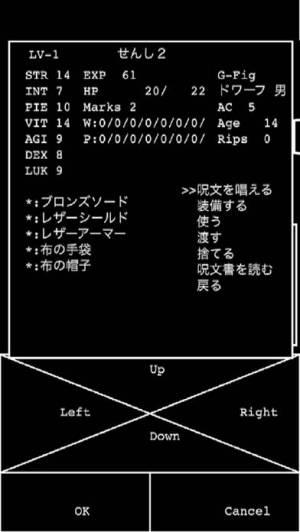 iPhone、iPadアプリ「Wandrium #1 Arena of The Mad Overlord」のスクリーンショット 4枚目