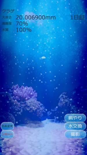 iPhone、iPadアプリ「癒しのクラゲ育成ゲーム(無料)」のスクリーンショット 4枚目