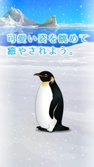 iPhone、iPadアプリ「癒しのペンギン育成ゲーム」のスクリーンショット 3枚目