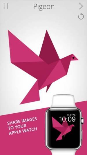 iPhone、iPadアプリ「Cardinal Land」のスクリーンショット 5枚目