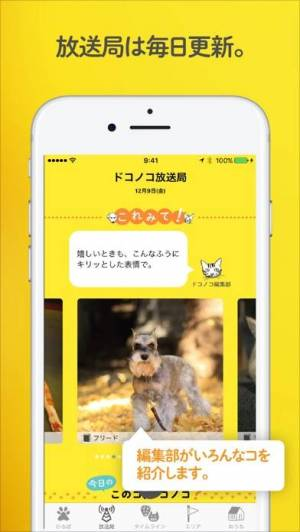 iPhone、iPadアプリ「ドコノコ - いぬねこ写真アプリ」のスクリーンショット 5枚目