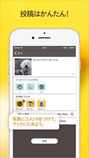 iPhone、iPadアプリ「ドコノコ - いぬねこ写真アプリ」のスクリーンショット 3枚目