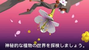 iPhone、iPadアプリ「NAMOO – 植物の神秘」のスクリーンショット 2枚目