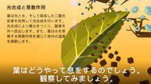 iPhone、iPadアプリ「NAMOO – 植物の神秘」のスクリーンショット 3枚目