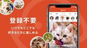 iPhone、iPadアプリ「PECO(ペコ):可愛いどうぶつ動画・迷子サポートサービス」のスクリーンショット 2枚目