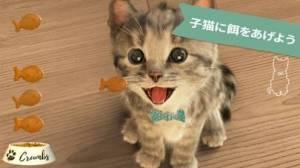 iPhone、iPadアプリ「Little Kitten 小さな子猫 - お気に入りの猫」のスクリーンショット 3枚目