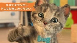 iPhone、iPadアプリ「Little Kitten 小さな子猫 - お気に入りの猫」のスクリーンショット 5枚目