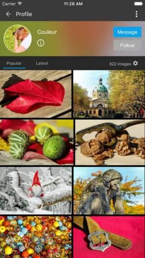 iPhone、iPadアプリ「Pixabay」のスクリーンショット 2枚目
