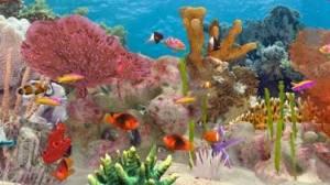iPhone、iPadアプリ「Fish Farm 3 - Aquarium」のスクリーンショット 1枚目