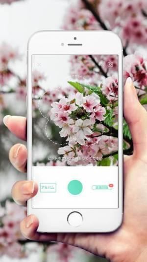 iPhone、iPadアプリ「PictureThis:撮ったら、判る-1秒植物図鑑」のスクリーンショット 1枚目