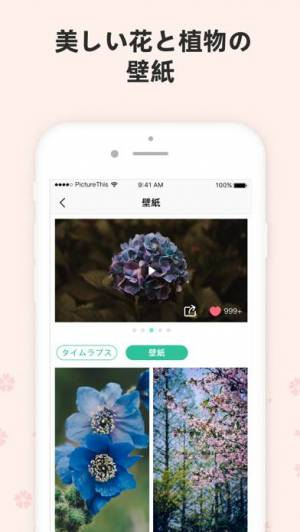 iPhone、iPadアプリ「PictureThis:撮ったら、判る-1秒植物図鑑」のスクリーンショット 5枚目