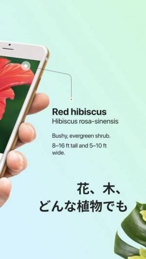 iPhone、iPadアプリ「PictureThis:撮ったら、判る-1秒植物図鑑」のスクリーンショット 2枚目