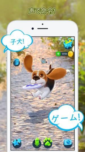 iPhone、iPadアプリ「Tamadog」のスクリーンショット 4枚目