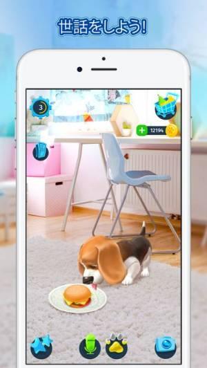 iPhone、iPadアプリ「Tamadog」のスクリーンショット 3枚目