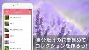 iPhone、iPadアプリ「花・植物好きが集まる写真共有・図鑑アプリ, FLOWERY」のスクリーンショット 3枚目