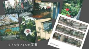 iPhone、iPadアプリ「EE35 フィルムカメラ」のスクリーンショット 3枚目