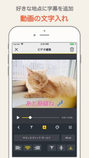 iPhone、iPadアプリ「MixClip - 動画編集 & 動画作成」のスクリーンショット 2枚目