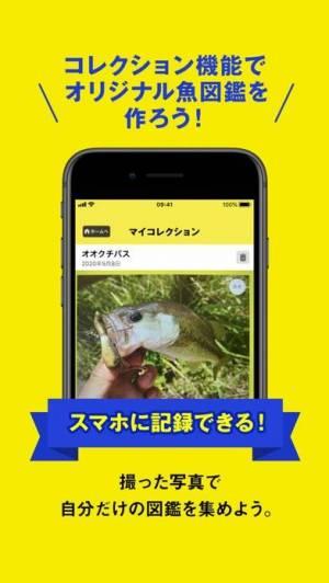 iPhone、iPadアプリ「フィッシュ-AIが魚を判定する未来の魚図鑑」のスクリーンショット 5枚目