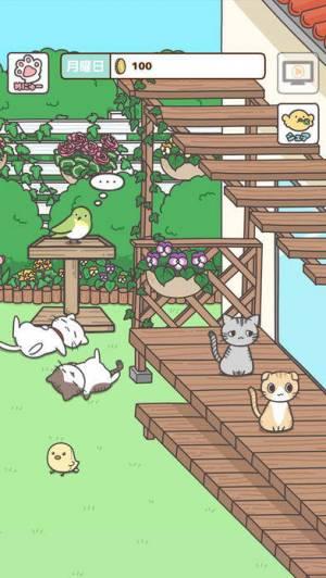 iPhone、iPadアプリ「飼い猫ぐらし」のスクリーンショット 1枚目