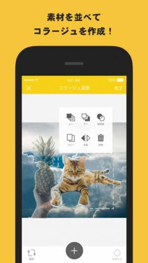 iPhone、iPadアプリ「雑コラ! - 簡単コラージュ画像作成」のスクリーンショット 3枚目
