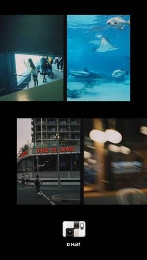 iPhone、iPadアプリ「Dazz - フィルムカメラ」のスクリーンショット 5枚目