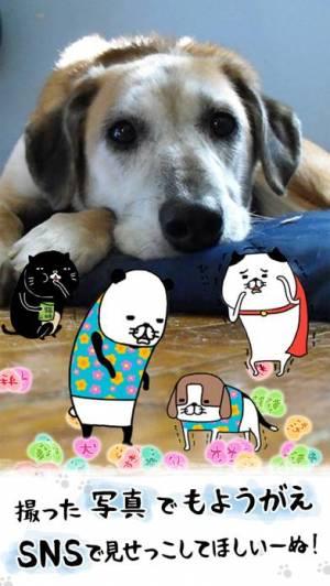 iPhone、iPadアプリ「パンダと犬 いつでも犬かわいーぬ」のスクリーンショット 4枚目