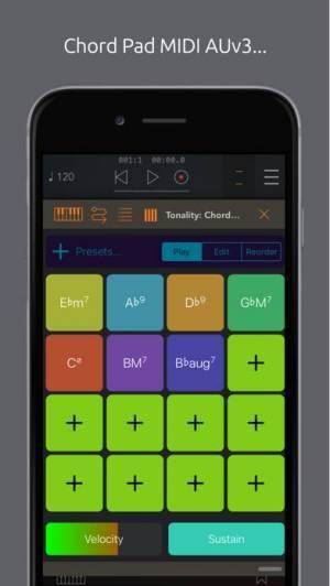 iPhone、iPadアプリ「Tonality: Piano/Guitar Chords」のスクリーンショット 3枚目