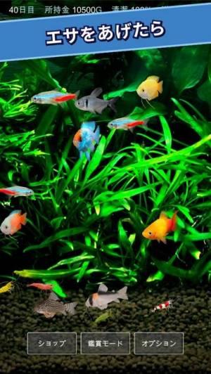 iPhone、iPadアプリ「熱帯魚育成「ミニアクア」癒しのアクアリウム体験」のスクリーンショット 3枚目