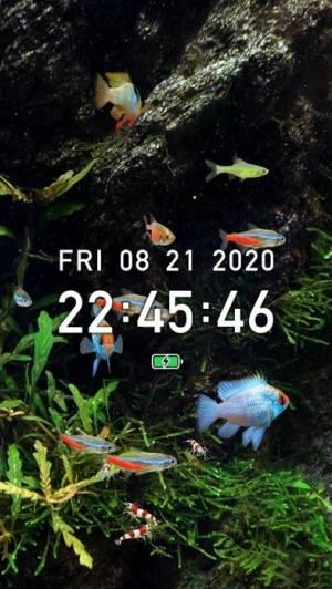 iPhone、iPadアプリ「熱帯魚育成「ミニアクア」癒しのアクアリウム体験」のスクリーンショット 5枚目