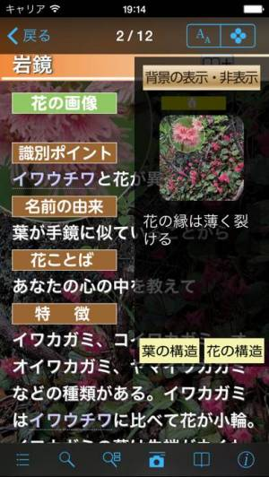 iPhone、iPadアプリ「季節の野草・山草図鑑」のスクリーンショット 3枚目
