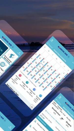 iPhone、iPadアプリ「Korean Air」のスクリーンショット 2枚目