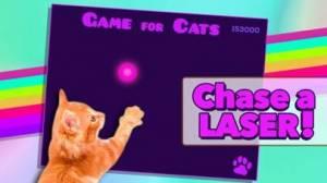 iPhone、iPadアプリ「Game for Cats」のスクリーンショット 2枚目