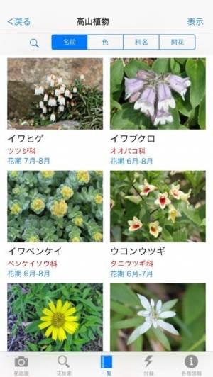 iPhone、iPadアプリ「花しらべ 花認識/花検索」のスクリーンショット 3枚目