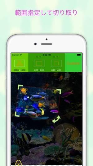 iPhone、iPadアプリ「EverClipper - 写真/画像を簡単リサイズ」のスクリーンショット 2枚目