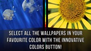 iPhone、iPadアプリ「壁紙 HD」のスクリーンショット 3枚目