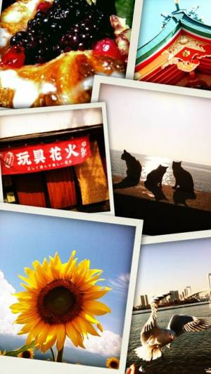 iPhone、iPadアプリ「ソソカメラLite(マルチ連写カメラ)」のスクリーンショット 5枚目