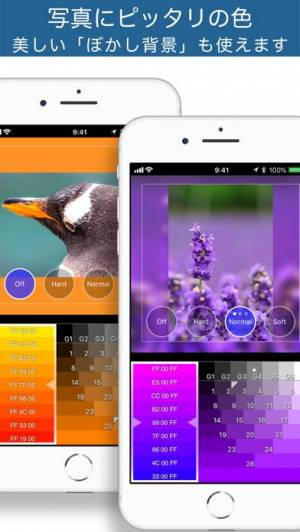 iPhone、iPadアプリ「正方形さん」のスクリーンショット 4枚目