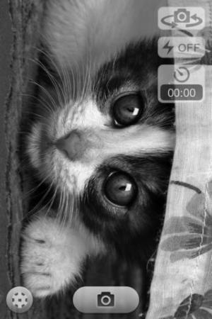iPhone、iPadアプリ「白黒カメラビデオ無料」のスクリーンショット 3枚目